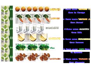 Moringa_Nutritions-790705